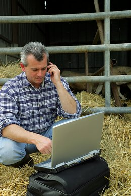 man-on-phone-at-farm
